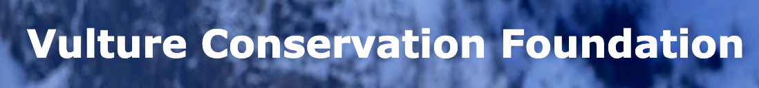 Logo Vulture Conservation Foundation